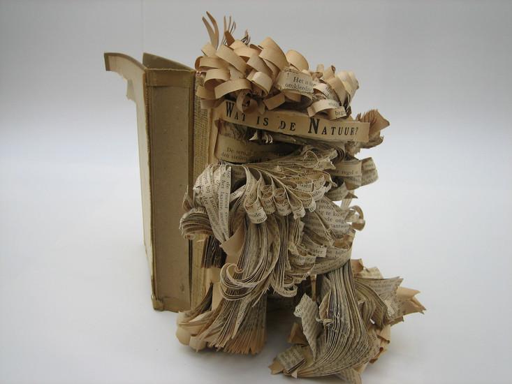 boek 4 Wat is de natuur?