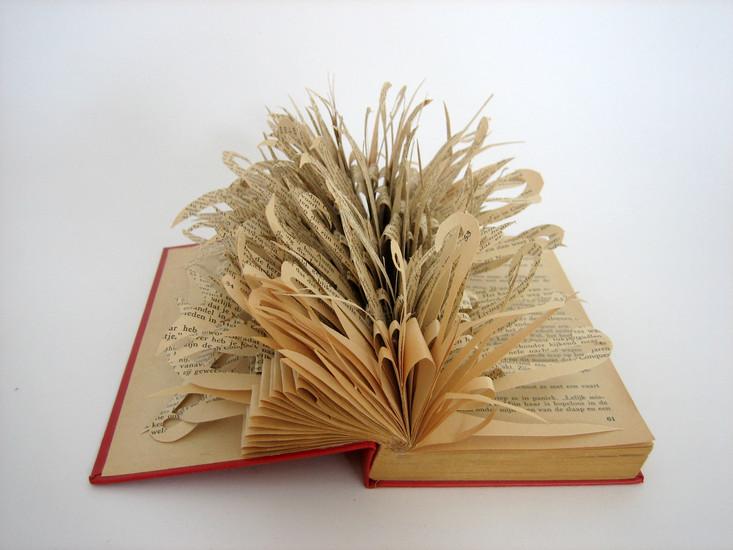 boek 6