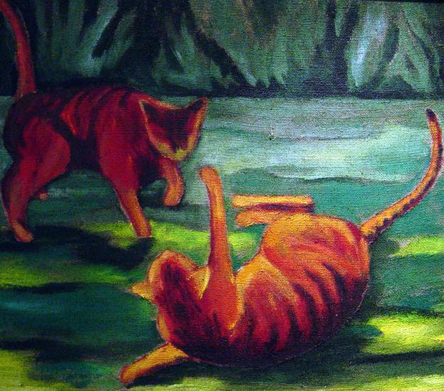 kattengevecht