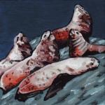 D412 zeeleeuwen