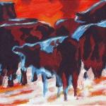 D236 koeien 35