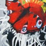 D248 vlinder 2