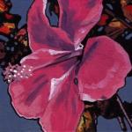 N266 hibiscus