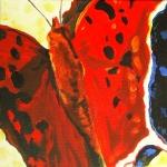 D261 vlinder 3