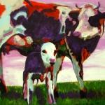 D268 koeien 37