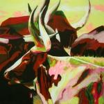 D269 koeien 38