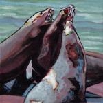 D415 zeeleeuwen