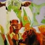 D280 koeien 39