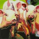 D282 varkens 4