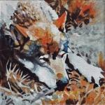 D417 wolf