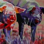 D292 varkens 5