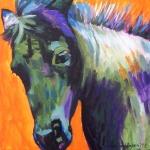 D137 pony