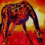 D309 giraf