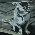 D314 hond