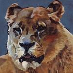 D434 leeuwin
