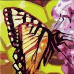 D317 vlinder