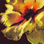 N234 bloem