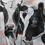 D192 koeien 23