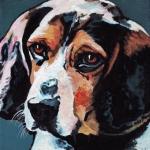 D447 Beagle