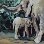D360 olifanten