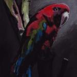 D361 vogel