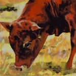 D363 koe