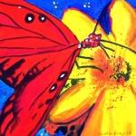 D148 vlinder