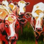 D188 koeien 22