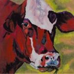 D377 koe