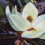 N256 Magnolia