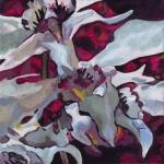 N257 orchidee