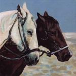 D453 paarden