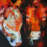 D262 koeien 36