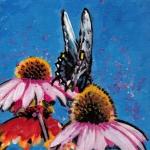 D470 vlinder