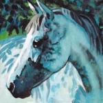 D471 paard