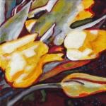 N261 tulpen