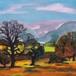 N288 landschap