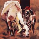 D395 koeien