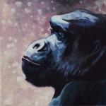 D396 gorilla
