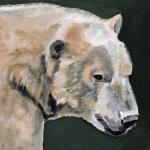 D501 ijsbeer