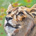 D519 leeuw