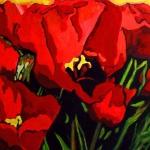 N163 tulpen 7