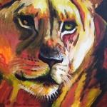 D171 leeuwin