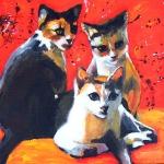 D191 kittens