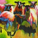 D232 schapen 8