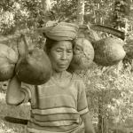 Balinese oude vrouw met kokosnoten