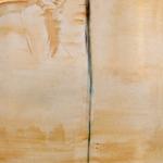 Acryl schilderij 'Steltloper'