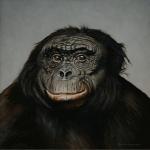 Bonobo Kanzi