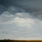 Polder in Zeeland 210311