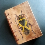 Book of Bugs